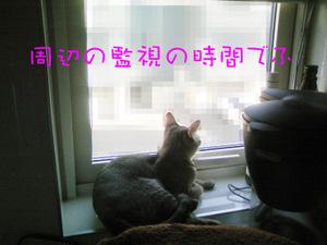 Dcf_0846