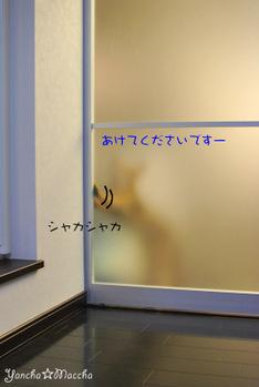 Minidsc_4710
