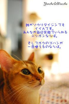 Minidsc_5984
