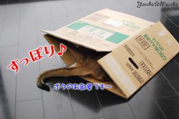 Minidsc_8242