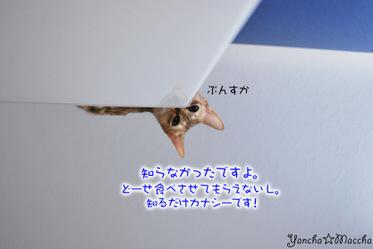 Minidsc_0063
