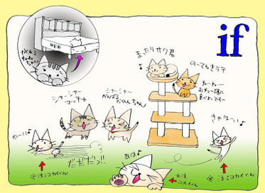If6cats