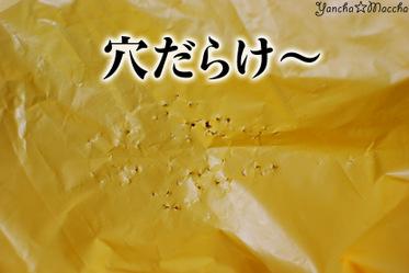 Minidsc_4471