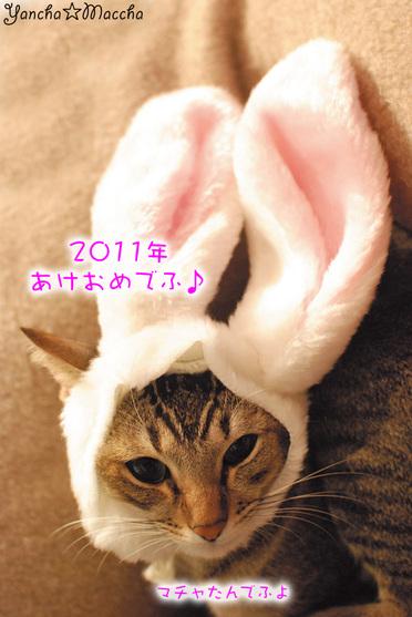 2011m_3