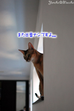 Minidsc_8125_2