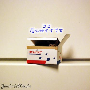 Minidsc_0244