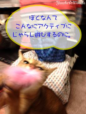 20121218_220521